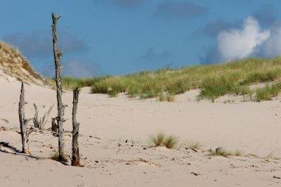 The Lomas de Arena sand dunes in Santa Cruz, Bolivia