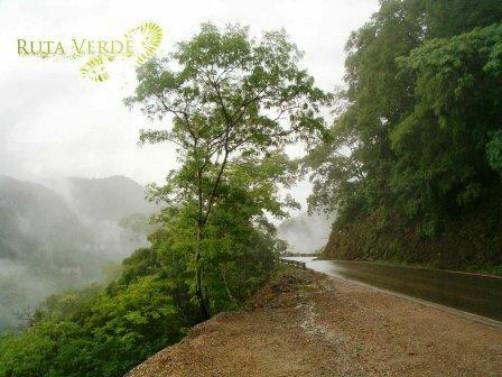 Road to Samaipata, Bolivia