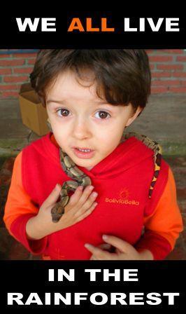 bolivia for kids rainforest boa