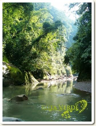 Visit Amboro National Park with Ruta Verde Bolivia