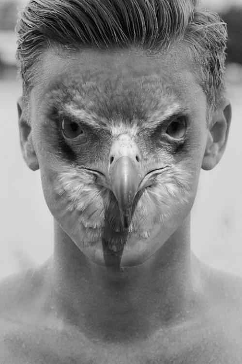 Bolivian Myths and Legends - The Silbaco Bird
