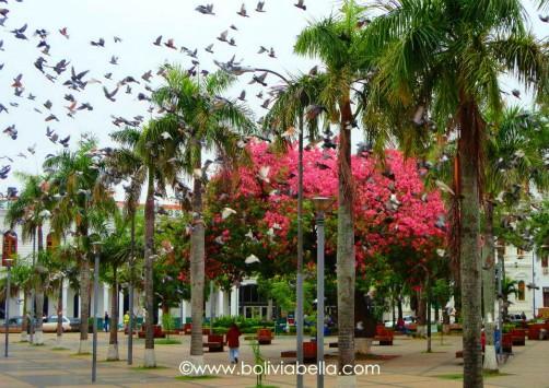 Plaza 24 de Septiembre, Santa Cruz, Bolivia, Basilica de San Lorenzo