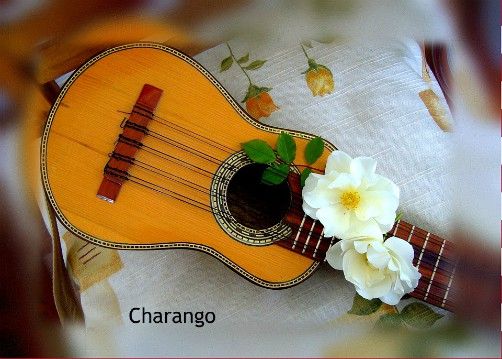Traditional Music of Bolivia's Central and Southern Valleys