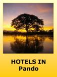 Hotels in Pando Bolivia