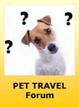 Ask or Post Information about Travel with Pets to Bolivia
