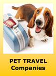 Pet Relocation and Pet Transport Companies