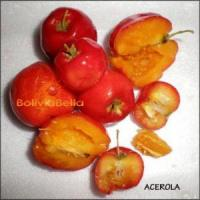 bolivian food fruit acerola