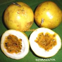 bolivian food fruit maracuya