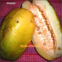 bolivian food fruit pachio paquio