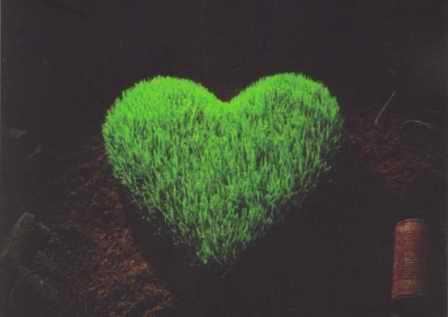 Green Hearts Project