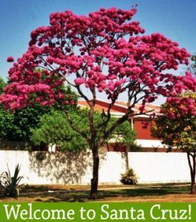 Welcome to Santa Cruz de la Sierra!