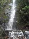 One of the bigger waterfalls outside of Coroico, Bolivia