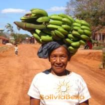 Bolivia culture. Chiquitano culture of Bolivia. Bolivian culture.