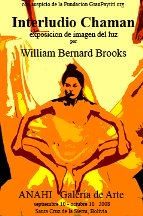 William Bernard Brooks Shamanic Interludes