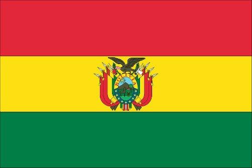 bolivian flag bolivia officially has 2 national flags national