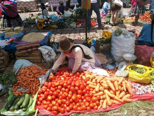 Bolivia outdoor markets bartering shopping