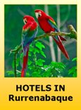 Hotels in Rurrenabaque Bolivia
