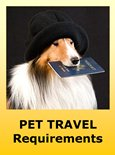 Requirements for Traveling with Pets to Bolivia