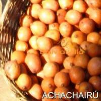 bolivian food fruit achachairú