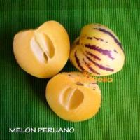 bolivia food fruit melon peruano