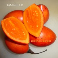 bolivia food fruit tamarillo
