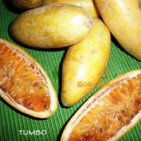 bolivian food fruit tumbo