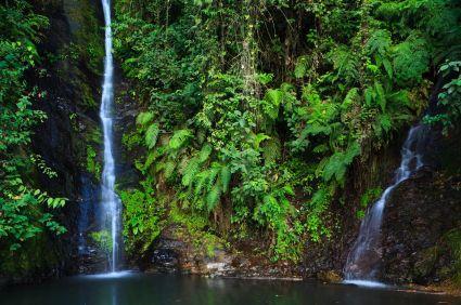 There are many beautiful waterfalls near Coroico.