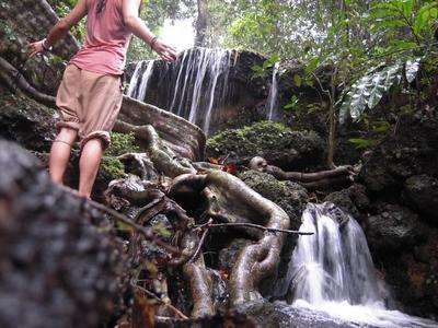 yo disfrutando de la selva de India