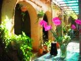 Casa Vieja Vineyard and Restaurant in Tarija Bolivia
